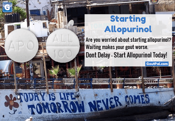 Starting Allopurinol photo